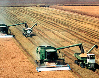 The development of hyper-efficient mechanized agricultural production revolutionized our country, but simultaneously increased our dependence and vulnerability on increasingly complex infrastructure.